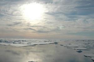 arctic-sea-ice