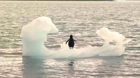 H2_Antarctic-melt